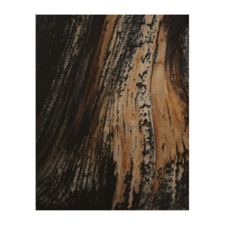 Burnt Tree Bark Texture Wood Canvas