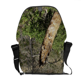 Burnt Trees At Griffith Park Courier Bag