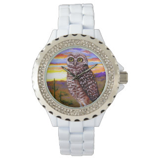 Burrowing Desert Owl  Creationarts Watch