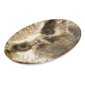 Burrowing Owl Baby Bird Wildlife Serving Platter