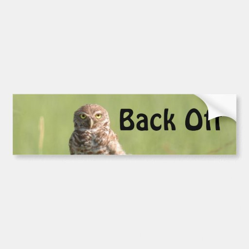 Burrowing owl Back Off Bumper Sticker