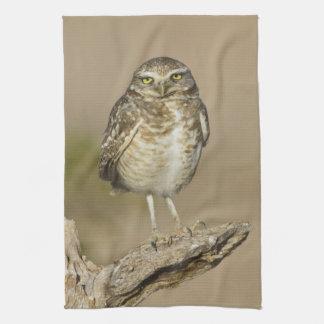 Burrowing Owl on a stick Tea Towel