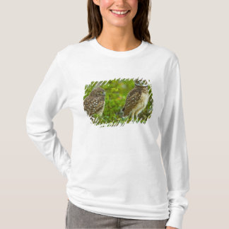 Burrowing owls are a popular site on Marco 4 T-Shirt