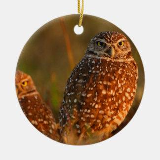 burrowing owls christmas ornament