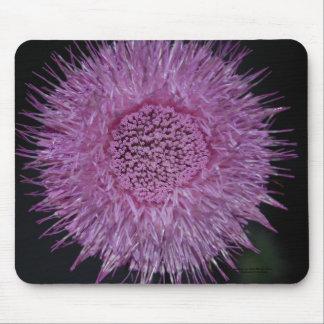 Burst of Purple. Mouse Pad