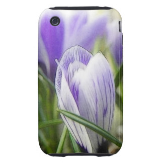 Bursting Into Blossom - Crocuses! Tough iPhone 3 Cover
