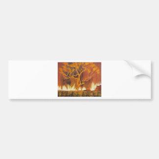 Bush Fire Australia Bumper Sticker