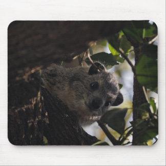 Bush Hyrax Mouse Pads