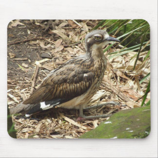 Bush Stone-curlew Mousepad