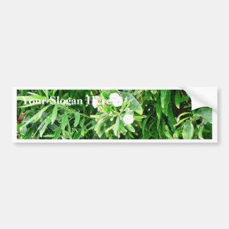 Bush With White Flowers Bumper Sticker