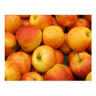 Bushel of Delicious Apples Postcard