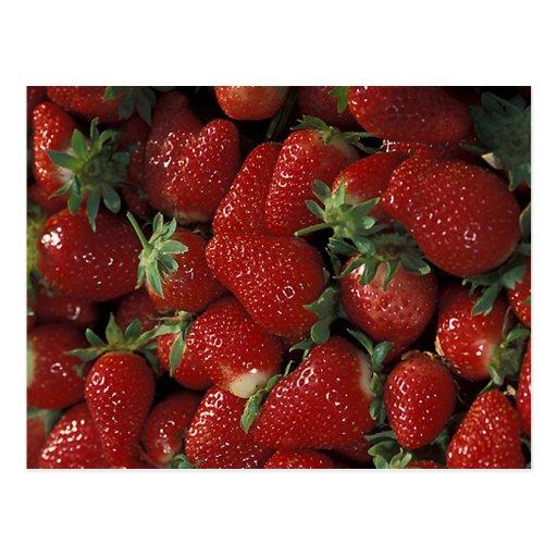 Bushel of Strawberries Post Card