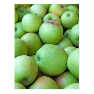 Bushels Of Apples Postcard