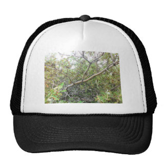 Bushes Mesh Hat