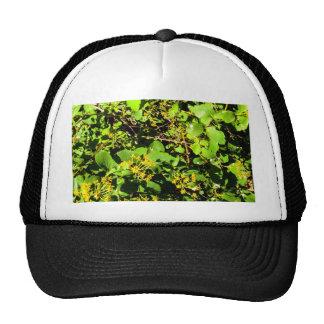 bushes trucker hat