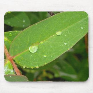Bushes in Rain Drops Mousepad