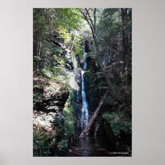 Bushkill Falls in the Poconos. print 0206