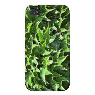 Bushy green star leaves cases for iPhone 4