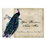 Business Cards - Teal Vintage Peacock 8 & Etchings