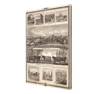 Businesses, residences, Cedar County Canvas Print