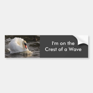 Busking Swan Car Bumper Sticker