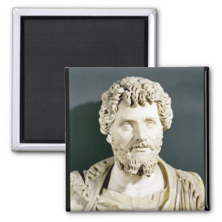 Bust of Emperor Septimus Severus Magnets