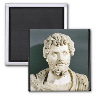 Bust of Emperor Septimus Severus Square Magnet