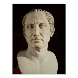 Bust of Julius Caesar 2 Poster