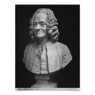 Bust of Voltaire Poster