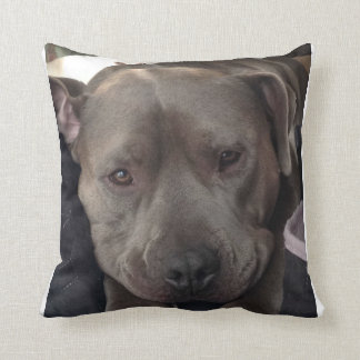 Buster Blue of The Shaggy Shack Pack Throw Cushions
