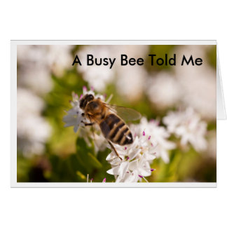 Busy Bee Birthday Card