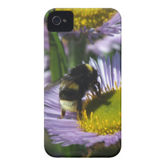 Busy Bee iPhone 4 Case-Mate Case