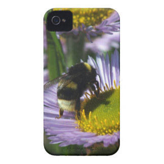 Busy Bee iPhone 4 Case-Mate Cases
