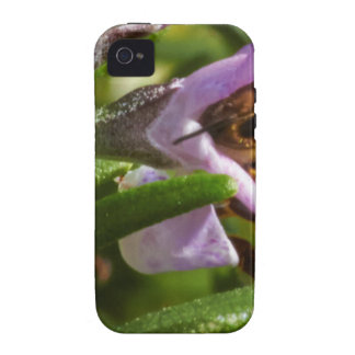 Busy Bee Vibe iPhone 4 Case