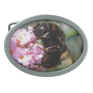 Busy Bumblebee and Pink Flowers Belt Buckle