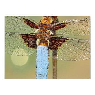 Busy Dragonfly 14 Cm X 19 Cm Invitation Card