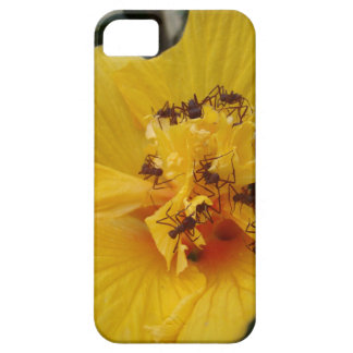 Busy leaf-cutting Ants iPhone 5 Cover