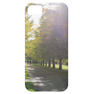 Bute Park - Autumn Trees Case For The iPhone 5