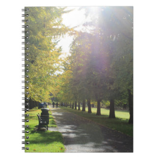 Bute Park - Autumn Trees Spiral Notebook