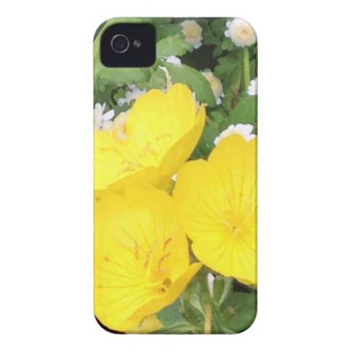 Buttercup and Babies Breath iPhone 4 Cover