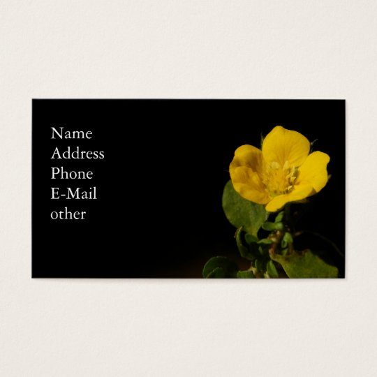 Buttercup ~ Biz card