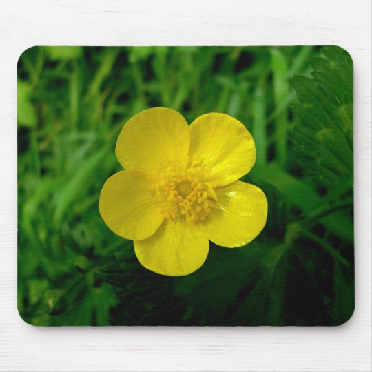 Buttercup Mouse Mat