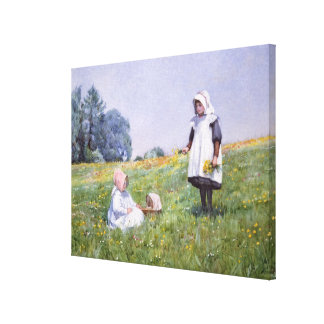 Buttercups and Daisies Canvas Print