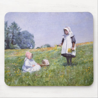 Buttercups and Daisies Mouse Mat