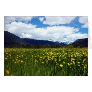 Buttercups Near Mount Lassen, Northern California Stationery Note Card