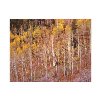 Butterfield Canyon Canvas Print