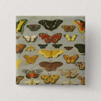 Butterflies 15 Cm Square Badge