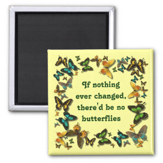 butterflies and change magnet