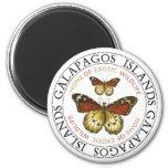 Butterflies Galapagos Islands Fridge Magnet