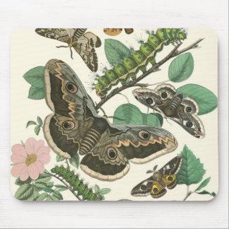 Butterflies Garden Foliage Mouse Pad